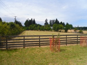 Lorne Gait can help you with Vancouver Island Farms Real Estate Listings