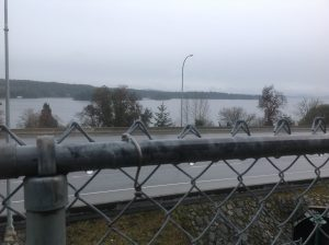Ladysmith Rainy Winter Day
