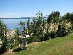 Saltair Real Estate is an excellent Vancouver Island choice