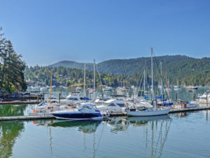 Vancouver Island Real Estate 2020